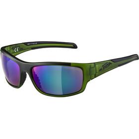 Alpina Testido Glasses darkgreen matt-black